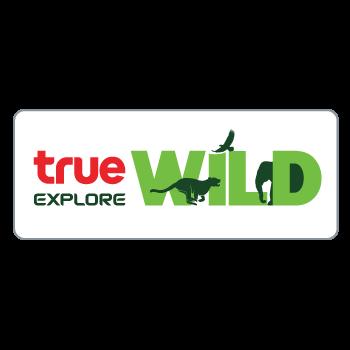 True Explore Wild